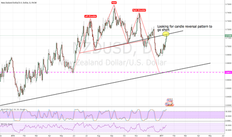 NZDUSD: Ready to roll-over ???