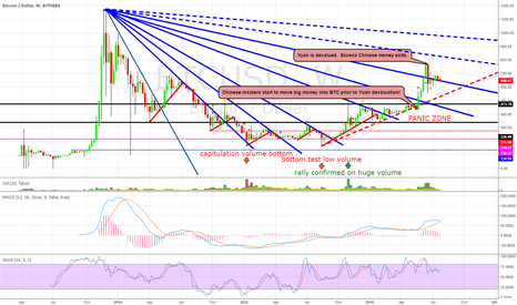 """BTCUSD: BTC WEEKLY CHART: """"The Panic Zone"""" Bulls Bears and Swans Oh My!"""