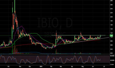 IBIO: (IBIO) Possible base breakout.
