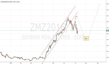 ZMZ2016: CBoT Soybeanmeal