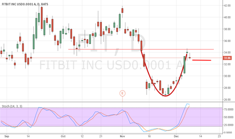 FIT: Cup & Handle