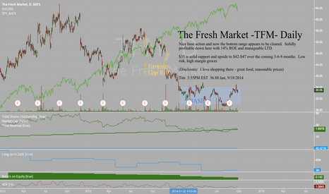 TFM: Looking for a place to hide in a market selloff? TFM