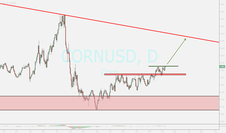 CORNUSD: corn...watching for buy