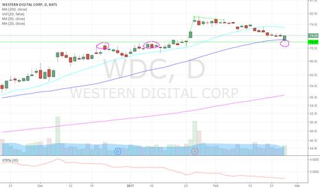 WDC: Long