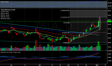 TSLA: Tesla finds intraday support at 222.00
