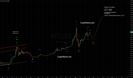 BTCUSD: BTC / USB Elliott Wave Count Update - Daily - Feb 18 2017