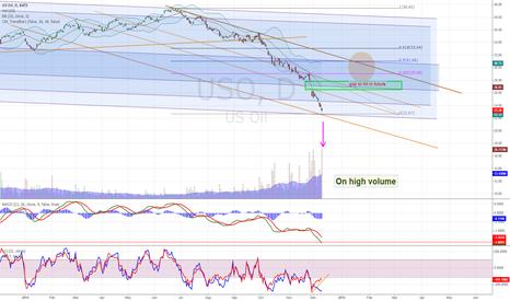 USO: US oil observation