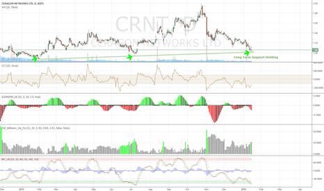 CRNT: CRNT Long Term Support Holding