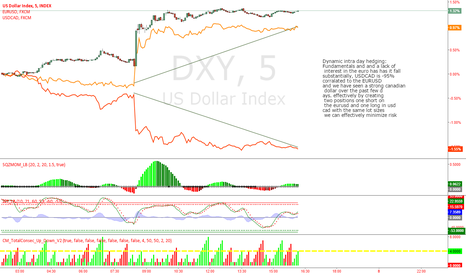 DXY: EURUSD, USDCAD , DXY index Dynamic intraday hedging