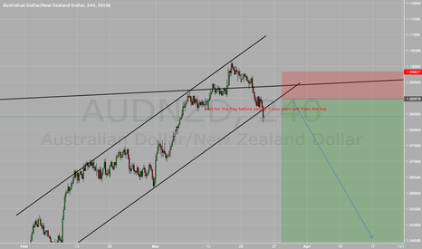 AUDNZD: Wait for the completion of the flag