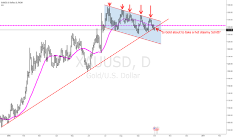 XAUUSD: Gold Breaking below long term support.