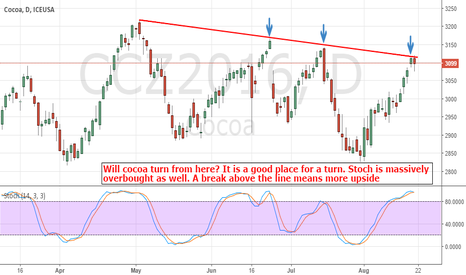 CCZ2016: Cocoa: Frustrating The Bears. Here Is A Good Place For A Turn