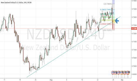 NZDUSD: First Idea. Here goes nothing.