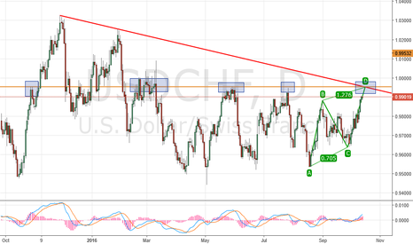 USDCHF: currency pair on hold