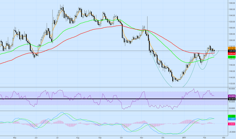 XAUUSD: 3 Cups - Gold Bullish