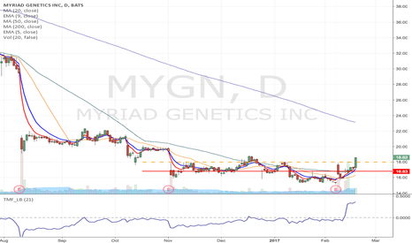 MYGN: MYGN - Flag formation Momentum long from $18 or higher