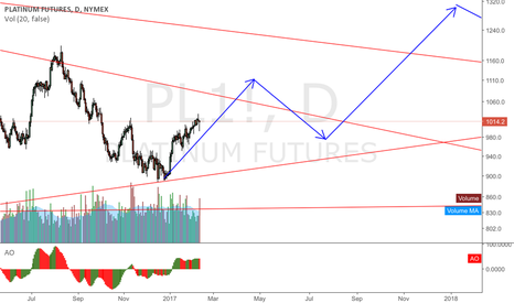 PL1!: PLATINIUM futures on a move up this year