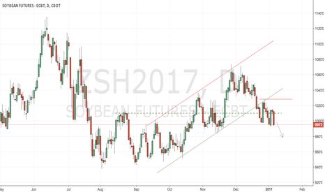 ZSH2017: CBoT soybeans