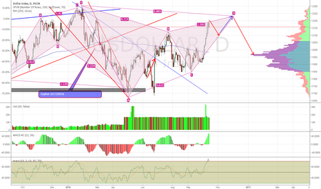 USDOLLAR: King Dollar Will Likely Go Down, and Up and Down...