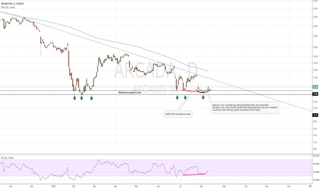 ARCAD: ARCADA Bulls could step in strong!