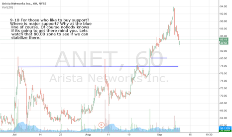 ANET: For those who like to buy support? Here is one to keep an eye on