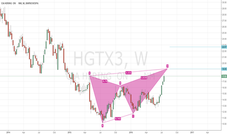 HGTX3: HGTX3 long, completing butterfly pattern