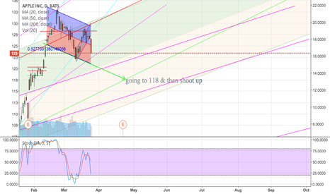 AAPL: AAPL moving to 118 before shoot up on ER