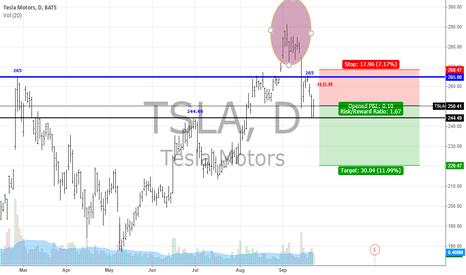 TSLA: TSLA For Short
