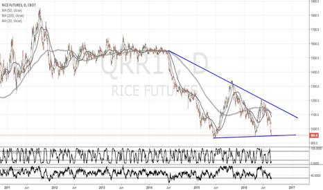 QRR1!: Rice
