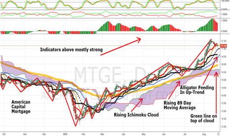 MTGE: MTGE: American Capital Mortgage, Strong Earnings