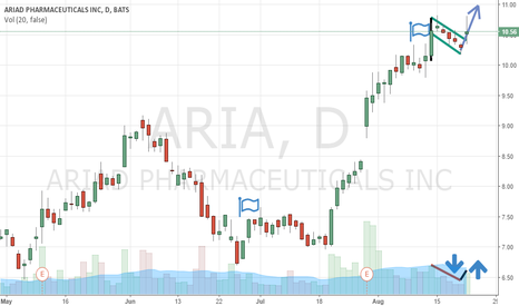 ARIA: Ariad Long