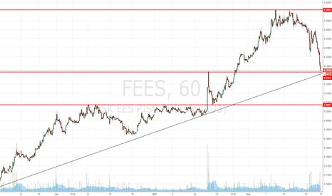 FEES: ФСК ЕЭС покупка