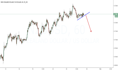 NZDUSD: I predict downside