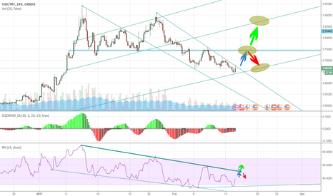 USDTRY: Usd TRY can long with Yellen 4H
