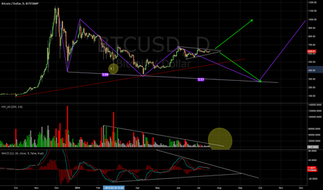 BTCUSD: Big movement ahead! + - 1. August 2014