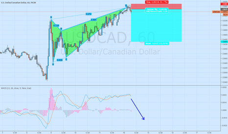 USDCAD: Short USD/CAD Bearish Butterfly 1h