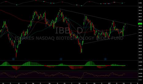 IBB: $IBB Biotechs