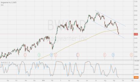 BWA: Oversold stochs; 200 day breakdown; Lower channel bounce