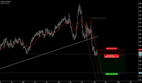 CCZ2014: Cocoa bear trend