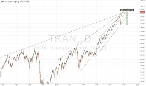 TRAN: TRAN - SHORT !