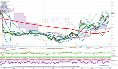 NLST: Low price stock candidate - Chosen by our whole brain process