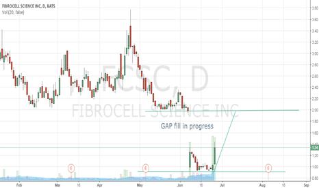 FCSC: Gap Fill In Progress