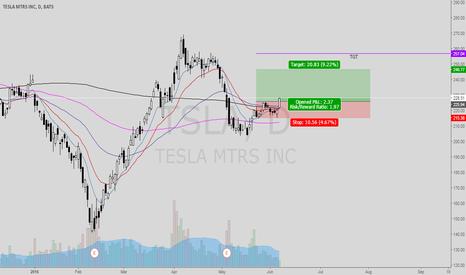TSLA: TSLA Higher low good swing trade set up