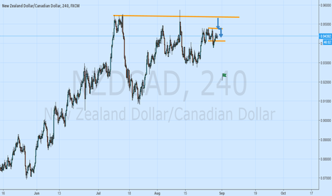 NZDCAD: Well This Is Strange  & Spooky(Do Like And Comment)